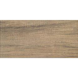 Kervara brown 22,3x44,8
