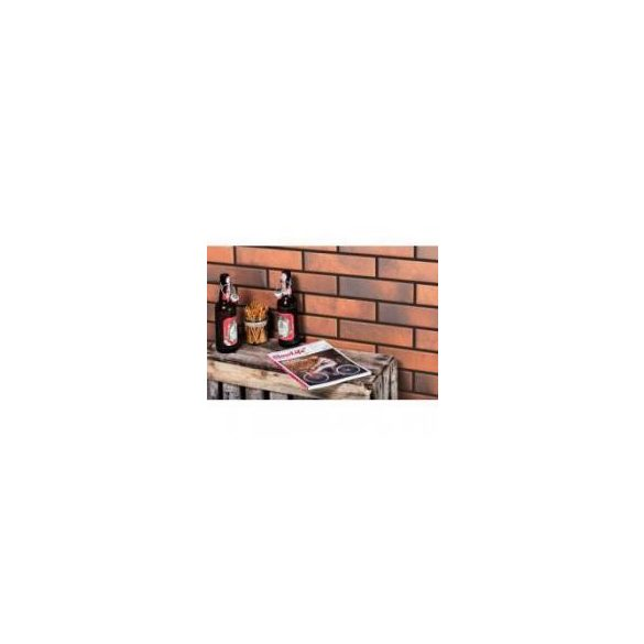 RETRO BRICK CHILI 245x65x8 homlokzat