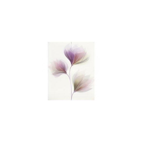 LORIS WHITE INSERTO FLOWER 40X50